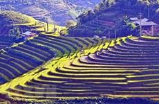 Reconoce Vietnam a otras siete zonas de reliquias nacionales especiales