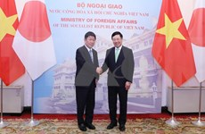 Comprometidos Vietnam y Japón a promover conexiones económicas globales