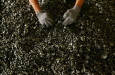 Preparado Indonesia para enfrentar a la UE en litigio sobre níquel