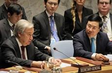 Vietnam por agilizar lazos con miembros del Consejo de Seguridad de la ONU