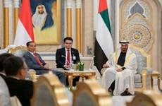 Firman Indonesia y Emiratos Árabes Unidos numerosos acuerdos cooperativos