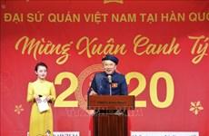 Festejan vietnamitas residentes en ultramar en ocasión del Año Nuevo Lunar 2020