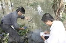 Pronostican empeoramiento de salinización en provincias de Delta del Mekong