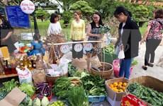 Recrean ambiente del Tet tradicional de Vietnam