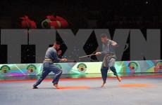 Concluye el XVII Campeonato Nacional del Arte Marcial vietnamita Vovinam en Argelia