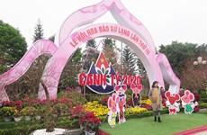 Inauguran Festival de flores de durazno en la provincia vietnamita de Lang Son