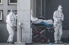 Ministerio de Salud de Vietnam insta a impulsar prevención contra nuevo tipo de coronavirus