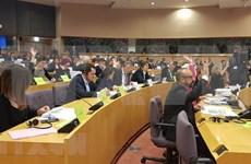Resalta prensa británica perspectivas de comercio entre Vietnam y la Unión Europea