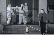 Indonesia alerta a pobladores sobre riesgo de neumonía del virus corona