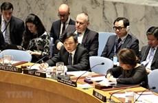 Reafirma Vietnam apoyo a lucha justa de Palestina por sus derechos inalienables
