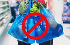 Lucha contra basuras plásticas en Vietnam