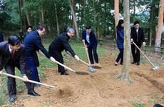 Lanzan en provincia vietnamita de Tuyen Quang festival de plantación de árboles