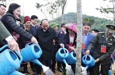Aspira Vietnam a convertirse en exportador líder de madera del mundo