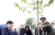 Vicepresidenta de Vietnam lanza festival de plantación de árboles