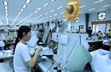 Vietnam registra 8,3 mil nuevas empresas en enero