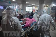 Fortalecen en Vietnam medidas para prevenir propagación de coronavirus