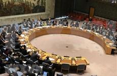 Valora Vietnam esfuerzos de ONU en proceso de paz en Libia