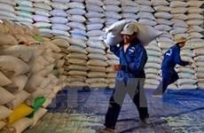 Crecen exportaciones de arroz vietnamita a Filipinas en 2019