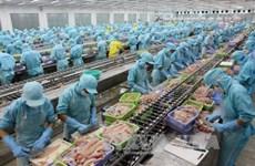 Vietnam invierte en el procesamiento de productos agrícolas
