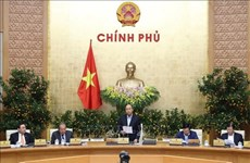 Gobierno de Vietnam prioriza combate contra el nCoV y busca paliar su impacto en economía