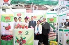 Empresas de Vietnam participan en Fruit Logistica 2020