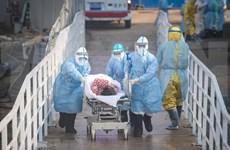 Evalúa Vietnam medidas para mitigar impacto de coronavirus en el turismo
