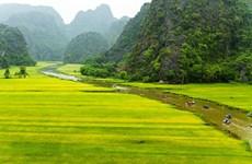 Pospone provincia vietnamita de Ninh Binh inauguración del Año Nacional de Turismo 2020