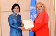 Prioriza Vietnam participación en actividades de la ONU