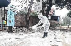 Impulsa Hanoi prevención del contagio de la gripe aviar A/H5N6