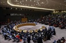 Exhorta Vietnam a promover diálogo y buscar soluciones para el conflicto israelí-palestino