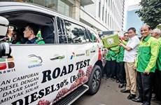 Indonesia comenzará a utilizar biodiésel B40 en marzo