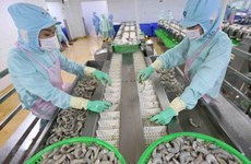Aspira Vietnam a ingresar 43 mil millones de dólares por exportaciones agrícolas en 2020