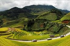 Show de realidad colombiano se filmará en 22 provincias vietnamitas