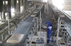 Prevén aumento de demandas de cemento en Vietnam en 2020