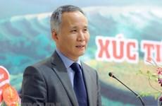 Vietnam y Corea del Sur determinados a incrementar intercambio comercial pese a coronavirus