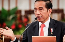 Emiratos Árabes Unidos inyectará inversiones en industria militar de Indonesia
