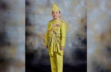 Líderes políticos de Malasia se entrevistan con el rey para establecer nuevo gabinete