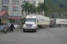 Reanuda provincia vietnamita parcialmente comercio con China