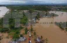 Reporta Indonesia al menos cinco muertos por inundaciones