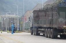 Vietnam y China restauran parte de sus actividades comerciales transfronterizas