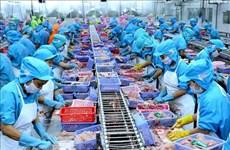 Exportadores de mariscos de Vietnam mantienen la confianza pese a impacto del coronavirus