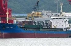 Desaparecen cinco vietnamitas en naufragio de barco en Japón