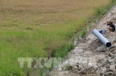 Unión Europea ayuda a vietnamitas afectados por sequía e intrusión salina