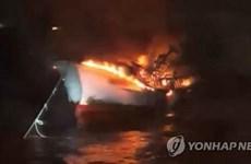 Cinco marineros vietnamitas desaparecidos en incendio de pesquero en Corea del Sur