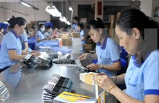Provincia vietnamita de An Giang promueve medidas para crear empleos