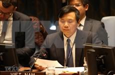 Vietnam pide al Consejo de Seguridad de la ONU revisar sanciones contra Sudán del Sur