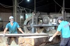 Industria maderera de Vietnam reporta señales positivas en primer bimestre de 2020