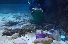 Promueve Vietnam investigación sobre ecosistemas marinos