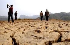 Enfrenta región central de Vietnam alto riesgo de sequía