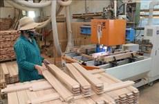 Reportan señales positivas para industria maderera de Vietnam en 2020